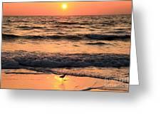 Sunset At St. Joseph Greeting Card by Adam Jewell