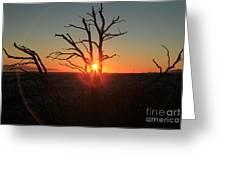Sunset Bulls Eye Greeting Card by Adam Jewell
