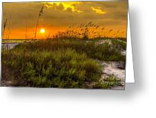 Sunset Dunes Greeting Card by Marvin Spates