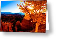 Sunset Fall Greeting Card by Chad Dutson