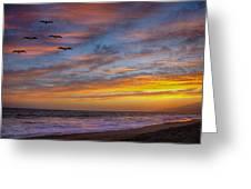 Sunset Flight Greeting Card by Robert Jensen
