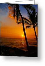 Sunset In Paradise Greeting Card by Athala Carole Bruckner