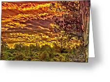Sunset Navajo Tribal Park Canyon De Chelly Greeting Card by  Bob and Nadine Johnston