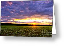 Sunset Over Farmland Greeting Card by Olivier Le Queinec