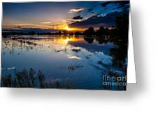 Sunset Reflections Greeting Card by Steven Reed