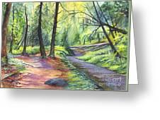 Sunset Stroll  Greeting Card by Carol Wisniewski