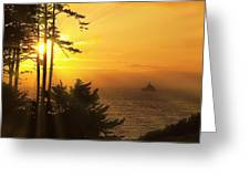 Sunset Thru The Trees Greeting Card by Andrew Soundarajan