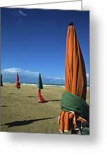 Sunshade On The Beach. Deauville. Normandy. France Greeting Card by Bernard Jaubert