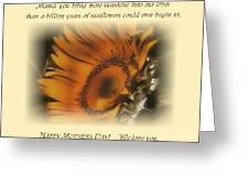 Sunshine For The Ages Greeting Card by Don Wright