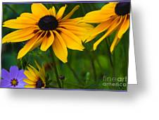 Sunshine Greeting Card by Timothy J Berndt