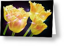 Sunshine Tulips Greeting Card by Debra  Miller