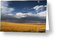 Sure Wish It Would Greeting Card by Jon Burch Photography