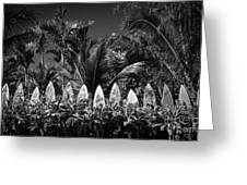 Surf Board Fence Maui Hawaii Black And White Greeting Card by Edward Fielding