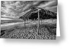 Surf Shack - Black and White Greeting Card by Peter Tellone