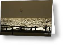 Surfing At Sunset Greeting Card by Arik Baltinester