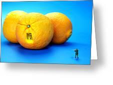 Surrender Mr. Oranges Little People On Food Greeting Card by Paul Ge