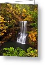 Surrounded By Fall Greeting Card by Darren  White