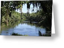 Suwanee River Vista Greeting Card by Theresa Willingham