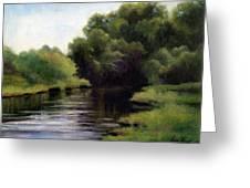 Swan Creek Greeting Card by Janet King