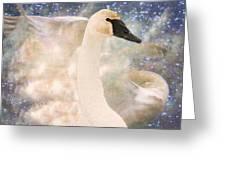 Swan Journey Greeting Card by Kathy Bassett