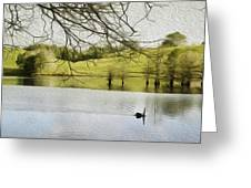 Swan Lake Greeting Card by Les Cunliffe
