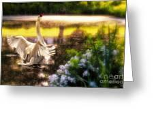 Swan Lake Greeting Card by Lois Bryan