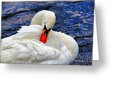 Swan Lake Greeting Card by Mariola Bitner