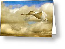 Swan Song Greeting Card by Lois Bryan
