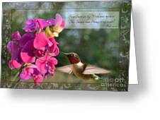 Sweet Pea Hummingbird Iv With Verse Greeting Card by Debbie Portwood
