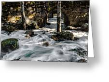 Swift Water Greeting Card by Mitch Shindelbower
