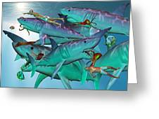 Swimming With The Big Boys Greeting Card by Betsy A  Cutler
