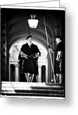 Swiss Guards Greeting Card by John Rizzuto