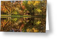 Sycamore Reflections Greeting Card by James Eddy
