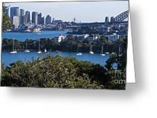 Sydney Harbour Greeting Card by Steven Ralser