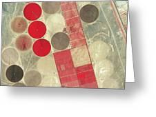 Tadco Farm Saudi Arabia Satellite Greeting Card by GeoEye
