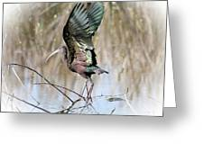 Take Off Greeting Card by TN Fairey