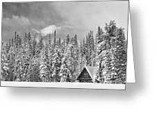 Taking Refuge - Grand Teton Greeting Card by Sandra Bronstein