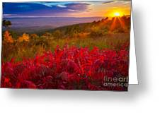 Talimena Evening Greeting Card by Inge Johnsson