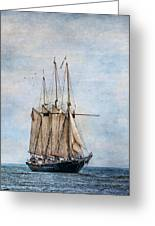 Tall Ship Denis Sullivan Greeting Card by Dale Kincaid