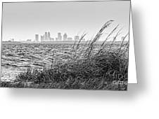 Tampa Across The Bay Greeting Card by Marvin Spates