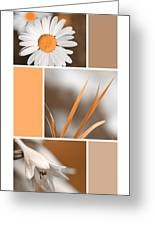 Tangerine Flowers Collage Greeting Card by Christina Rollo