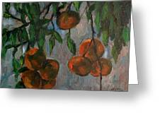 Tangerines At Dawn Greeting Card by Peter Paul Christian Mahilum