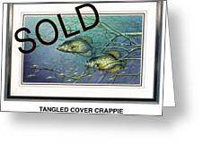 Tangled Cover Crappie Greeting Card by JQ Licensing