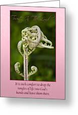 Tangles Greeting Card by Carolyn Marshall