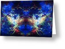 Tarantula Reflection 1 Greeting Card by The  Vault - Jennifer Rondinelli Reilly