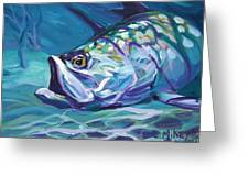 Tarpon Greeting Card by Mike Savlen