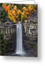 Taughannock Greeting Card by Mark Papke