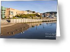Te Papa Wellington New Zealand Greeting Card by Colin and Linda McKie