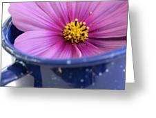 Tea Garden Greeting Card by Frank Tschakert
