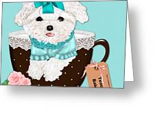 Teacup Baby Maltese Greeting Card by Margaret Newcomb